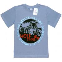"""91301-21 """"Wild Life"""" футболка для мальчиков 9-13 лет, стальной"""