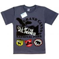 """91301-29 """"Grand Canyon"""" футболка для мальчиков 9-13 лет, стальной"""