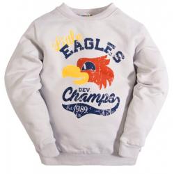 """10-5803 """"EAGLES"""" Лонгслив для мальчика на манжете, 5-8 лет, серый"""